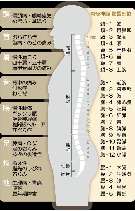a4_maki3_yoko_naka-%e6%9b%b4%e6%96%b0%e6%b8%88%e3%81%bf_03_03